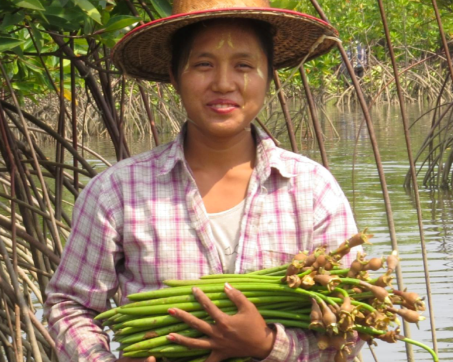 myclimate-klimaschutzprojekt-mangrove-myanmar-7216-Woman_seedlings-copy.png